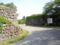 Yamaga5