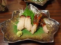 Hanasaki1