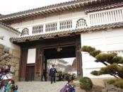 Hyougo1_258