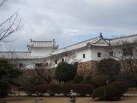 Hyougo1_268
