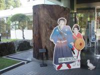 Kirishima_032