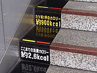P8290093