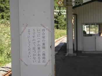 Nozoki2