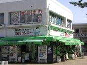 Ryouma3_1
